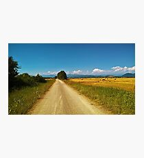 The countryroad Photographic Print