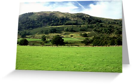 Hillside in the Lakes by JImage