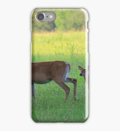 Twin Fawns and Mama Doe iPhone Case/Skin