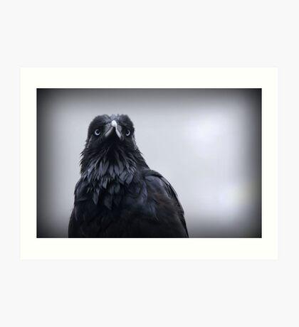 Crow protector Art Print