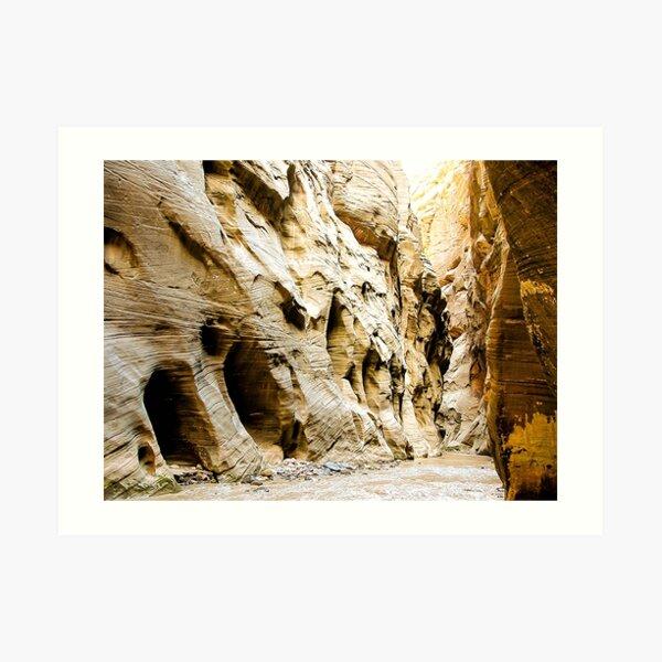 The Narrows, Zion National Park Art Print