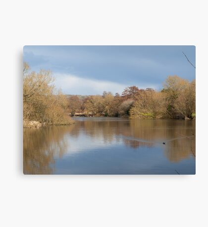 Patching Pond in spring Canvas Print