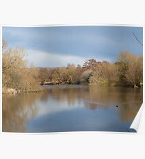 Patching Pond in spring Poster