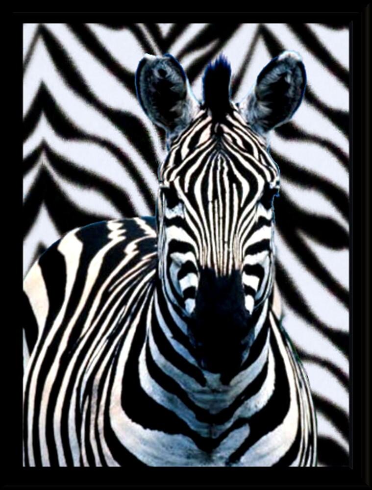 zebra by CheyenneLeslie Hurst