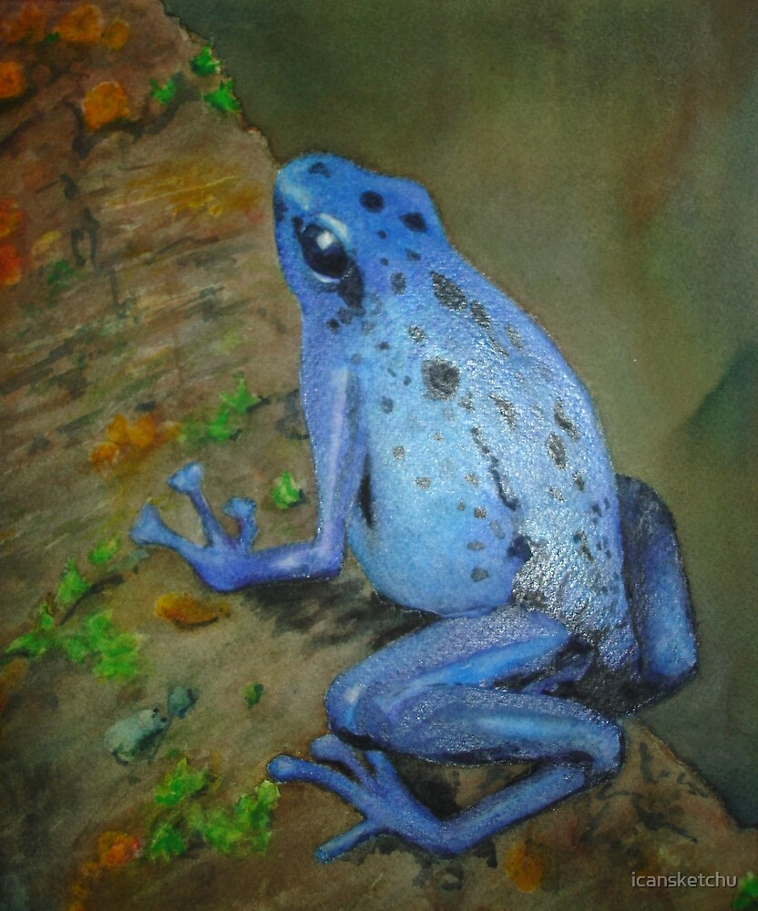 Brilliant Blue Forest Frog by icansketchu
