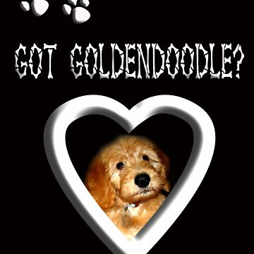 Got Goldendoodle? by quin10