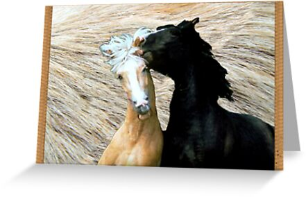 wild horses by CheyenneLeslie Hurst