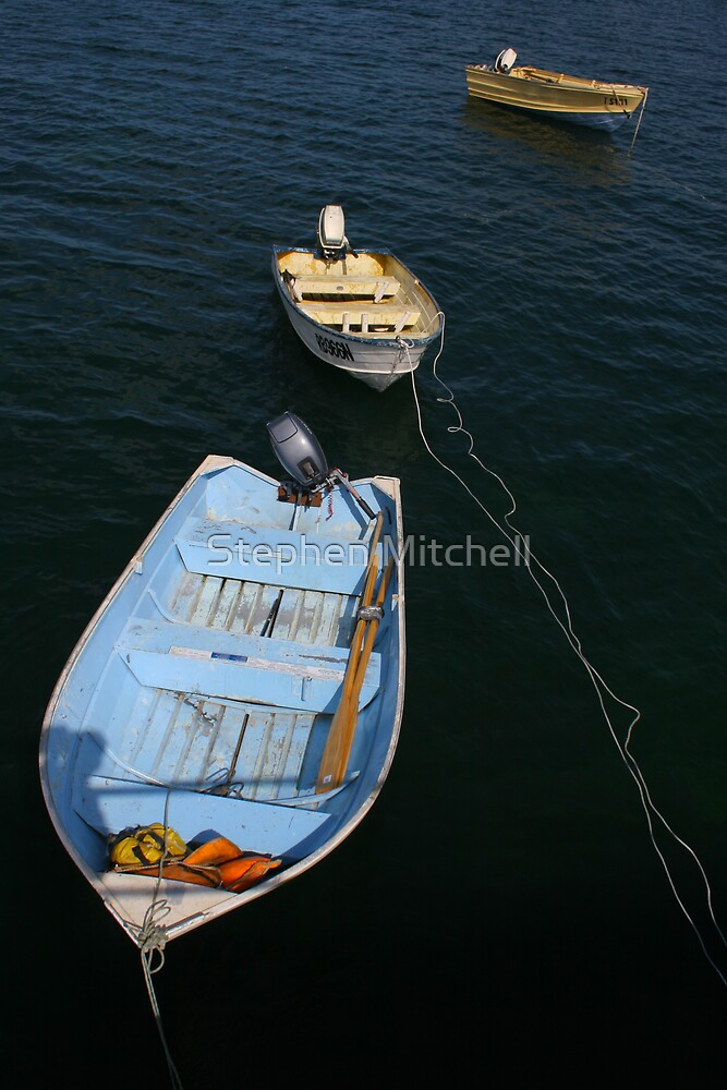 Tethered by Stephen Mitchell