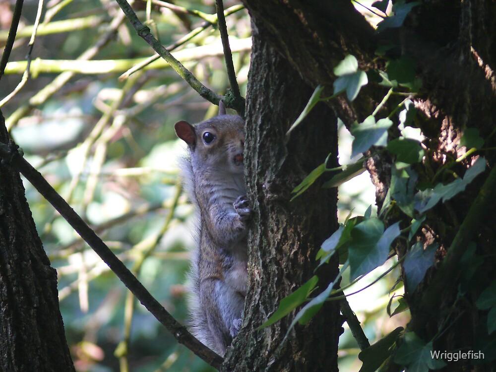 Tree Climbing by Wrigglefish