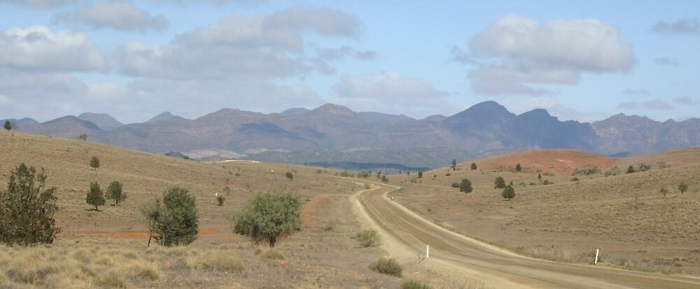 Flinders Ranges 2 by Dannii Cockerell
