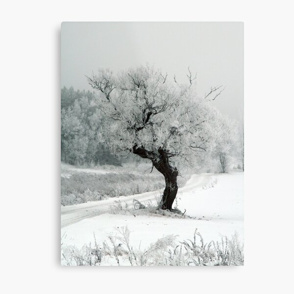 One day Metal Print