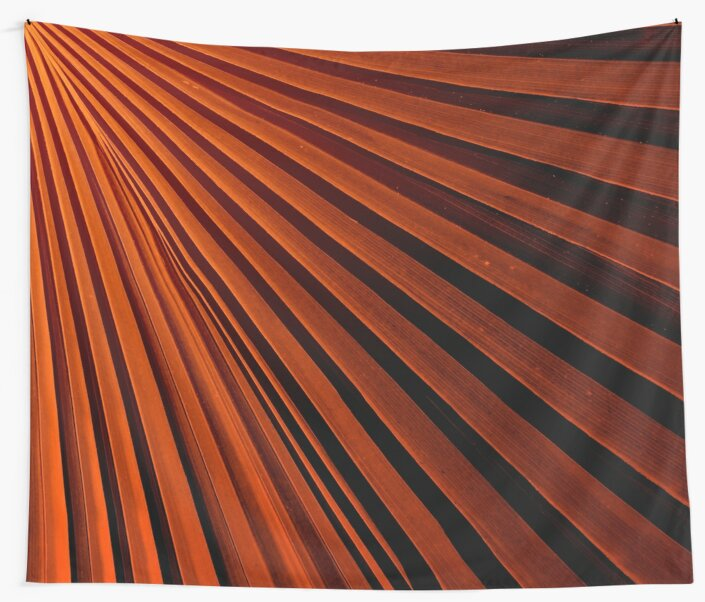 Abstract Orange Palm Frond by Phil Perkins