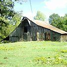 Country Barn by Robin Harrison