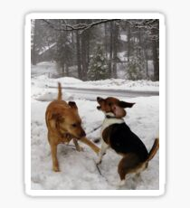 Dogs at Play in the Snow Sticker