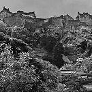 Domineering Castle by Chris Clark