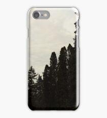 Gloomy Winter Trees iPhone Case/Skin