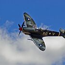 Supermarine Spitfire Mk VIII by greencardigan