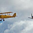 Tiger Moth and Ryan by greencardigan
