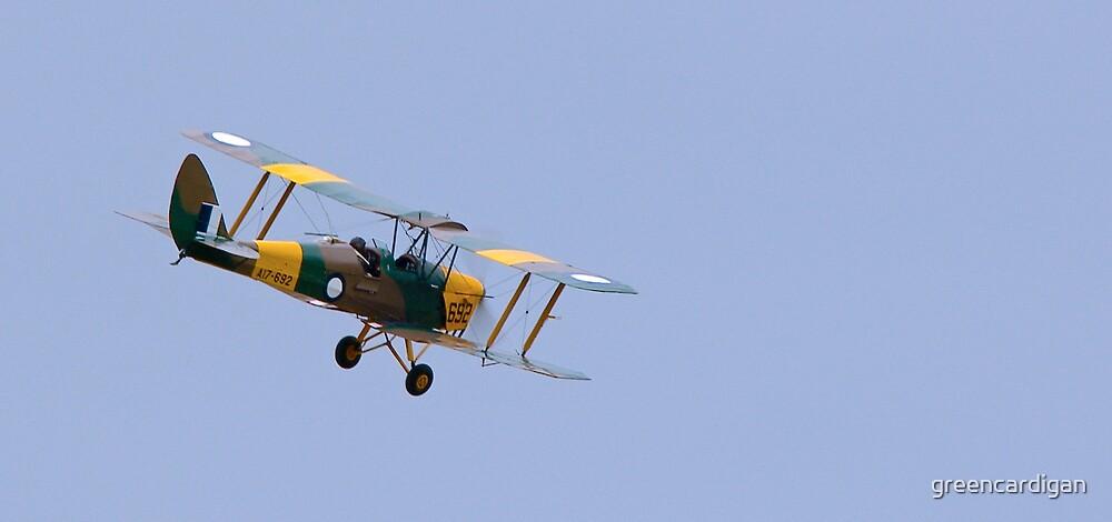 Tiger Moth by greencardigan
