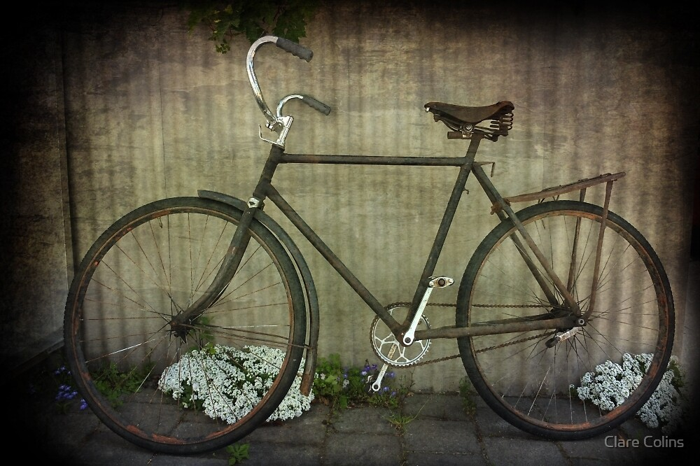 The Chef's Bike by Clare Colins