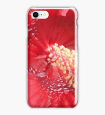 Red Red iPhone Case/Skin