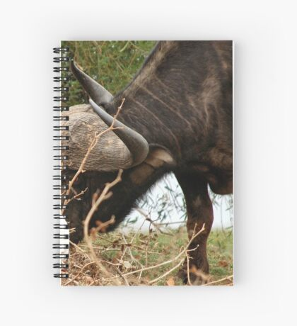 ANYTHING TO EAT? - The Buffalo - Syncerus caffer  Spiral Notebook