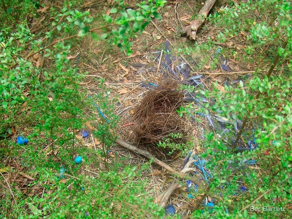 bower bird nest by Bec Bartlett