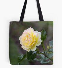 Autumn Roses Tote Bag