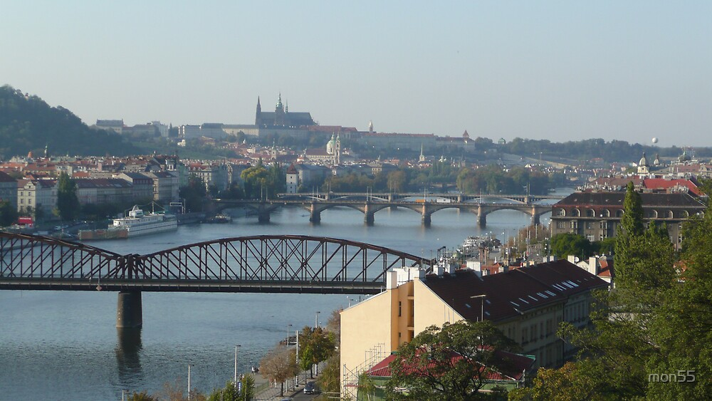 A view of Prague from Vysehrad by mon55