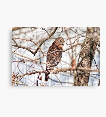 Surveying the Buffet Table Canvas Print