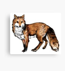 Ink Brush Fox Canvas Print