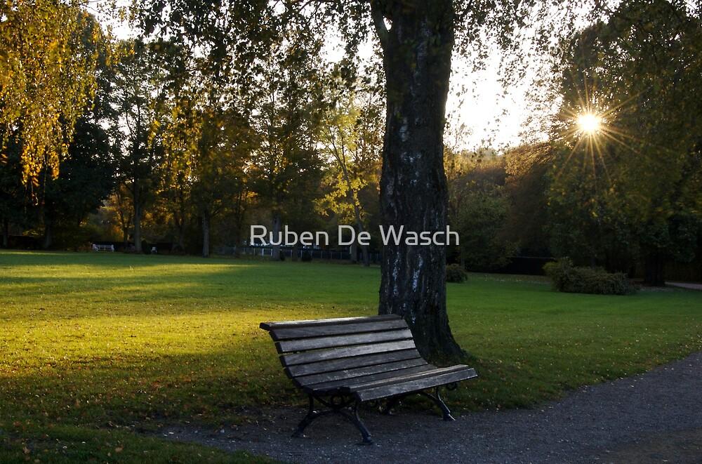Bench by Ruben De Wasch