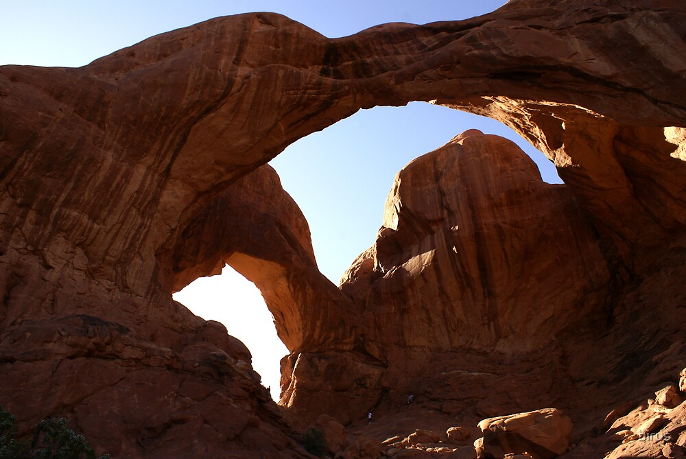 double arch by birus