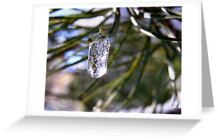 A jewel of ice by Annika Strömgren