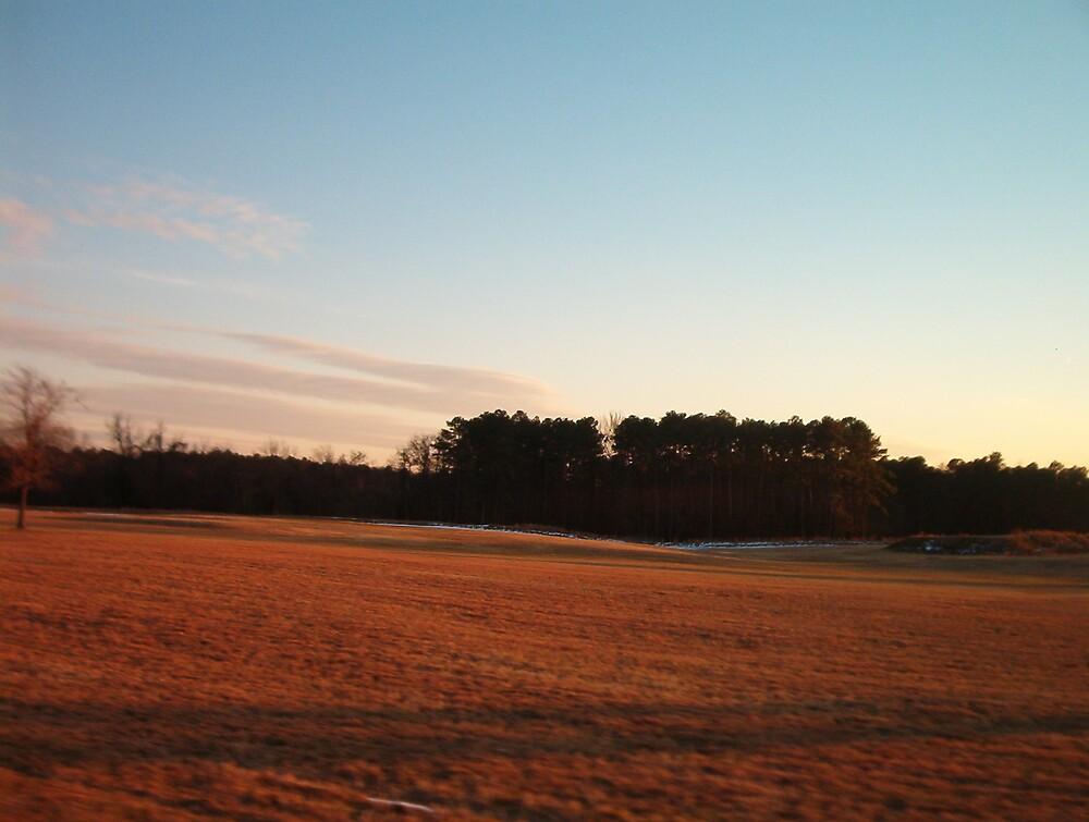 Yorktown Battlefield with sunset glow by Patricia Harduby