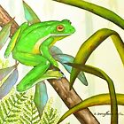 Rain Forest Perch by sandysartstudio