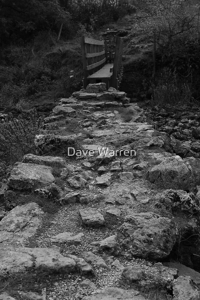Rocky Path by Dave Warren