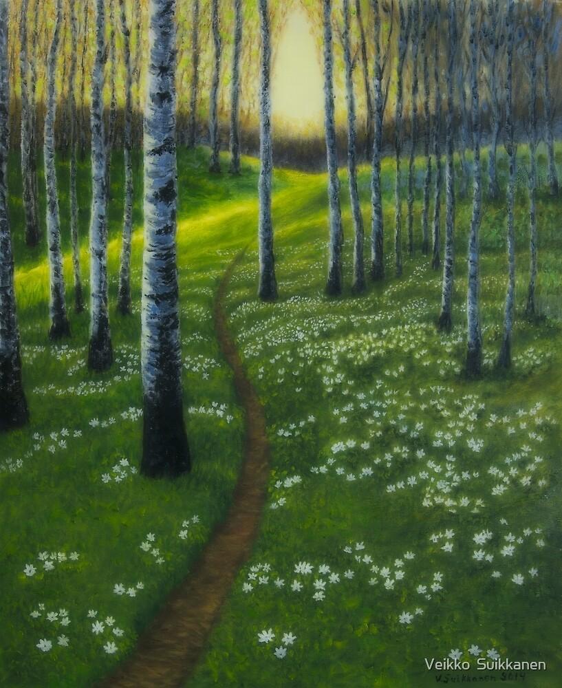 Spring path by Veikko  Suikkanen