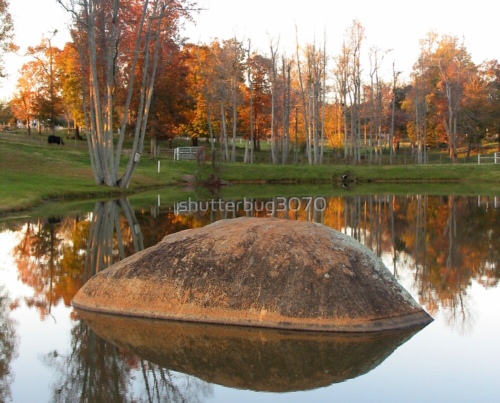 Autumn Reflections by shutterbug3070