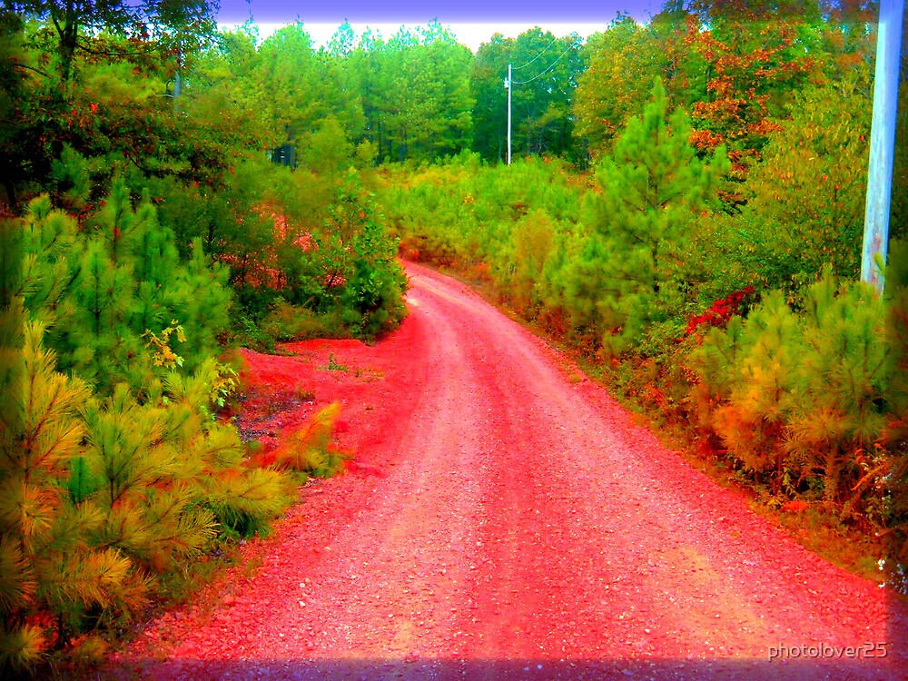The Road Home by photolover25