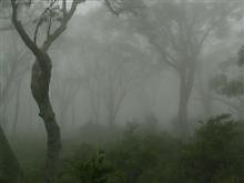 photoj-landscapes by photoj