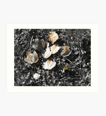 Black and White colorized leaves Art Print