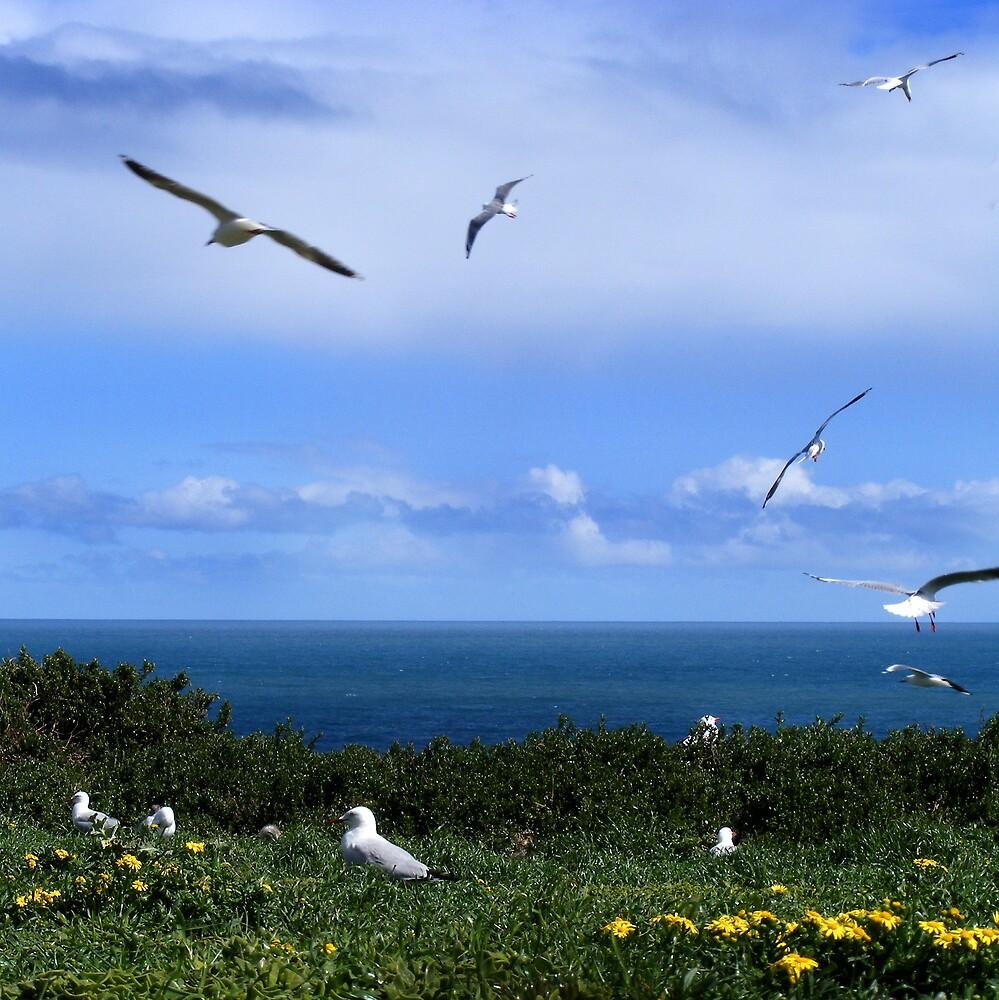 Flying by Bruce  Watson