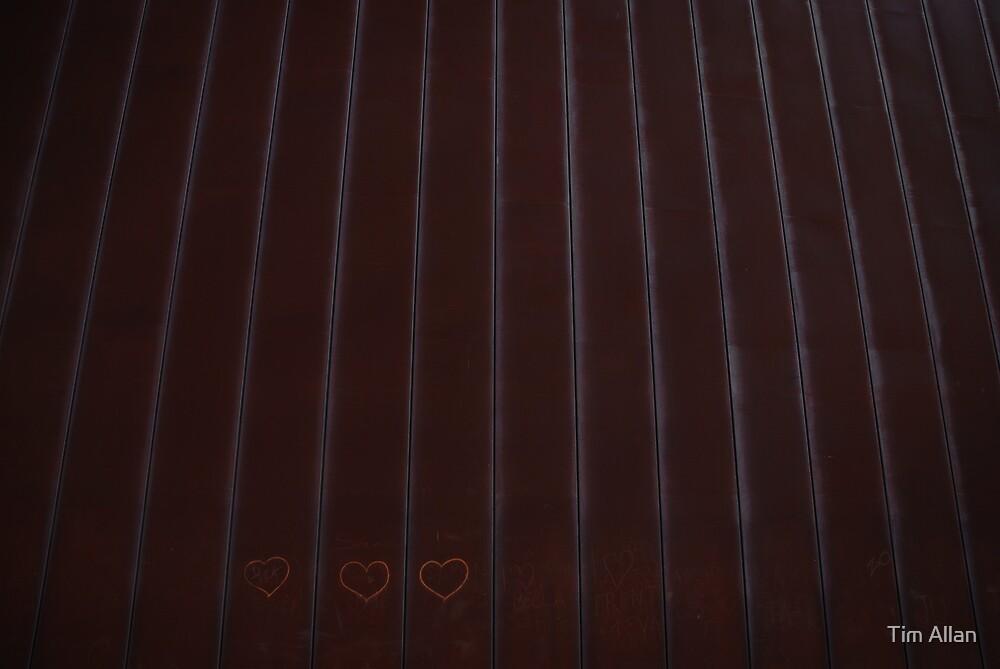 Linear Love by Tim Allan