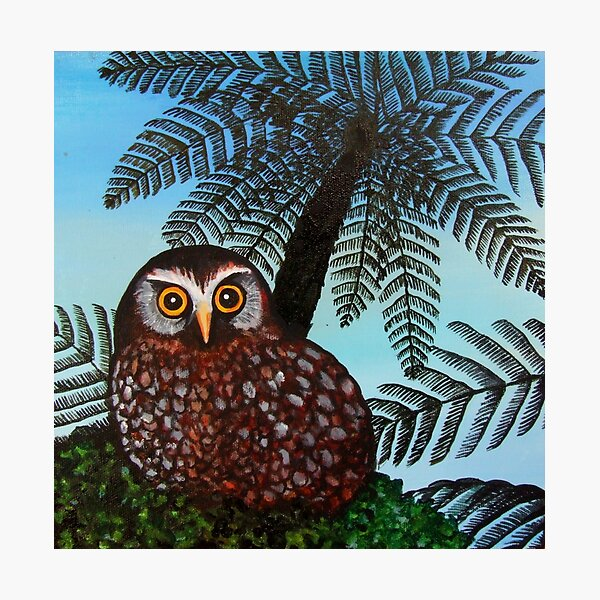Morepork Photographic Print