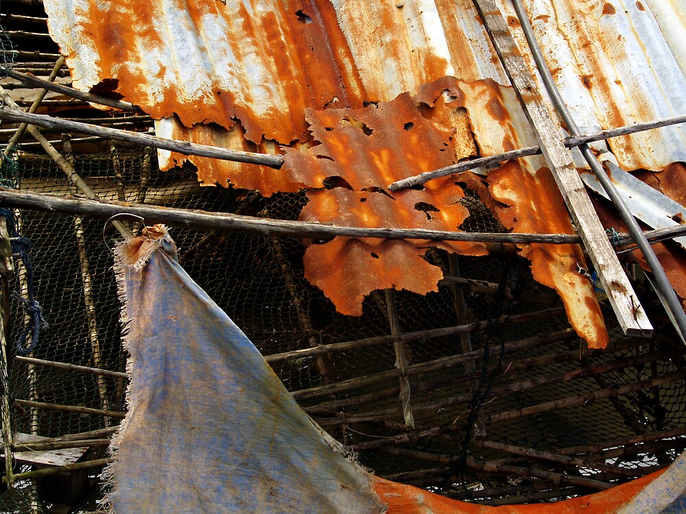 rust by lauren lederman