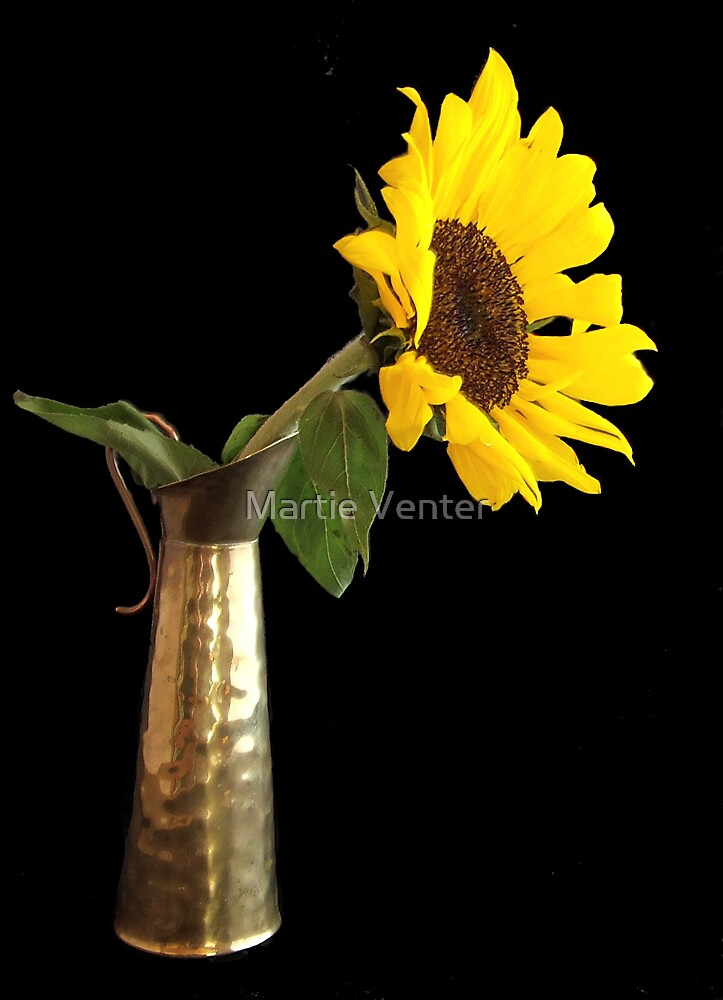 Sunflower in Brass Jug by Martie Venter