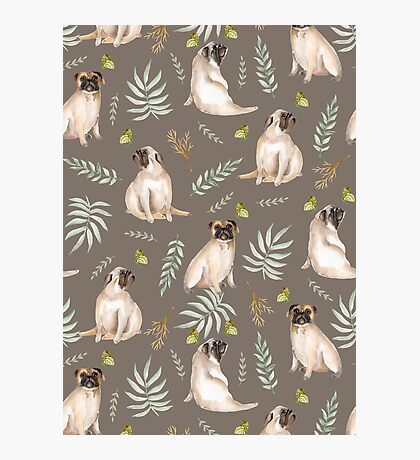 Pugs and butterflies. Brown pattern Photographic Print