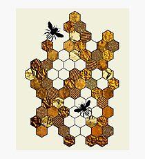 Golden Honeycomb Photographic Print
