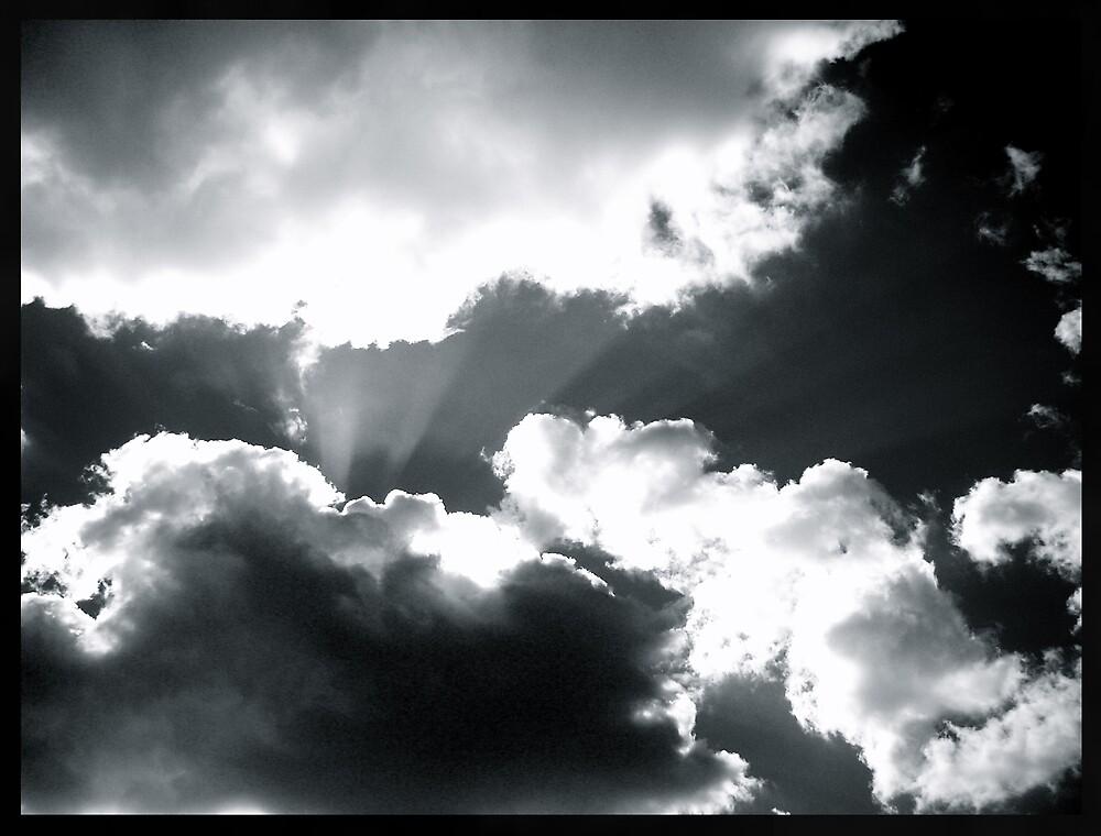Hiding Your Light by Adam Devine
